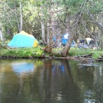Manistee Streamside Camp