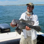 Montauk Sea Bass Monster