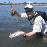 Tampa Bay Sea Trout