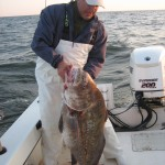 Delaware Bay Drum on Yet Another Trip