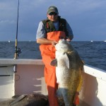 Delaware Bay Drum