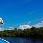 Fishing Isla Holbox Mangroves on a Sapphire Day