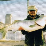 Manhattan Striped Bass like THIS, when your, AS GOOD AS BILLY !