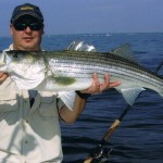 New York Bight Striped Bass