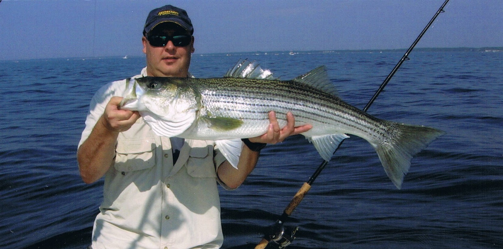 Opinion striped bass record new york