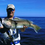 New York Tilefish At The &quot;Fishtails&quot;