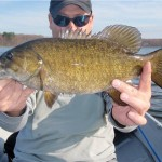 Amawalk Reservoir Smallmouth, They're Here!