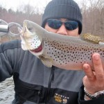 Mark's Kensico Reservoir Brown